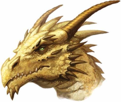 Gold dragons head
